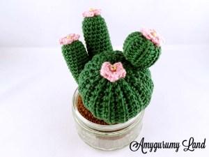 Cactus-10